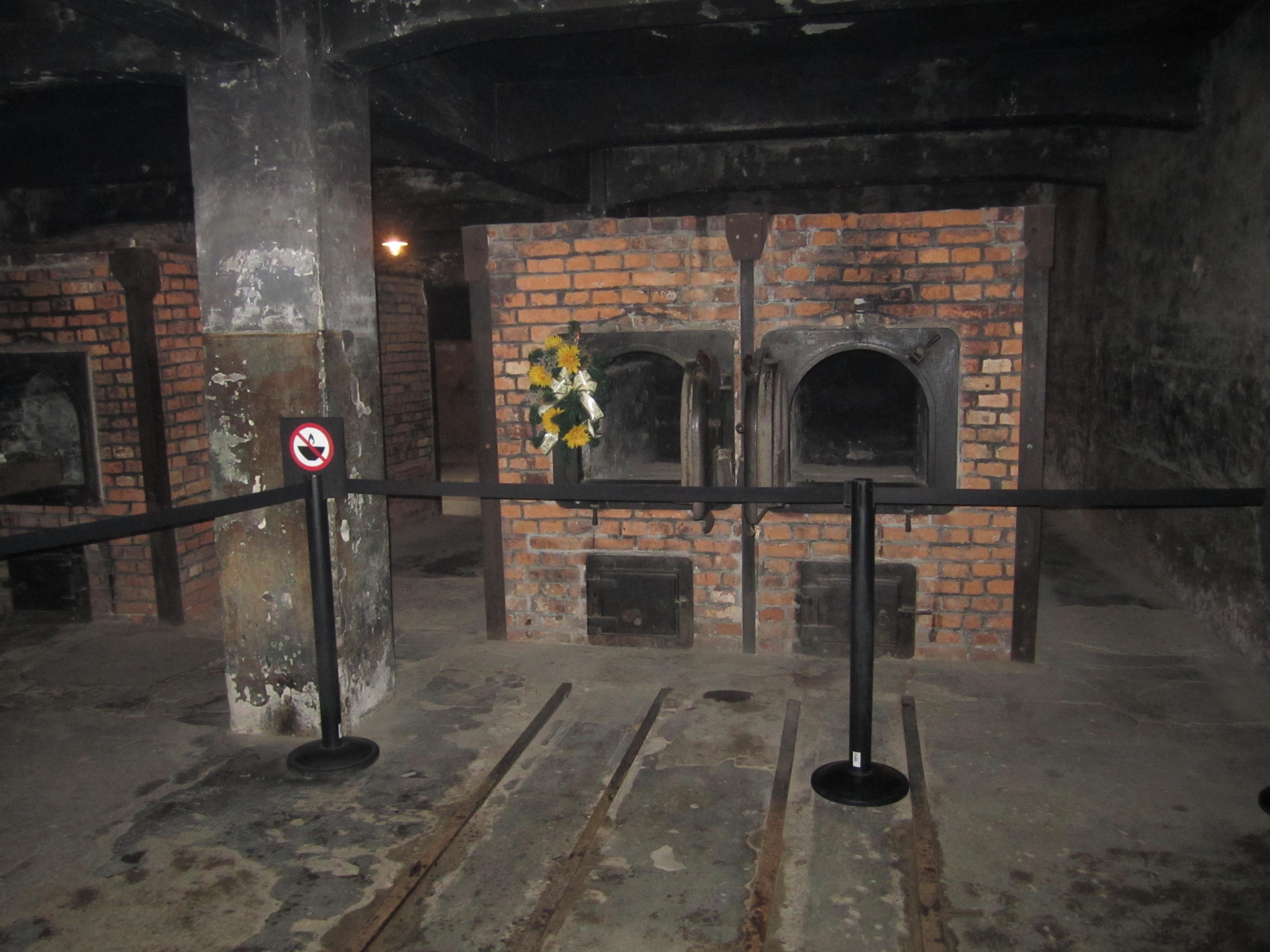 Auschwitz quand les livres s 39 ouvrent for Auschwitz chambre a gaz