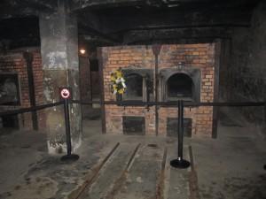 Auschwitz quand les livres s 39 ouvrent for Camp du struthof chambre a gaz
